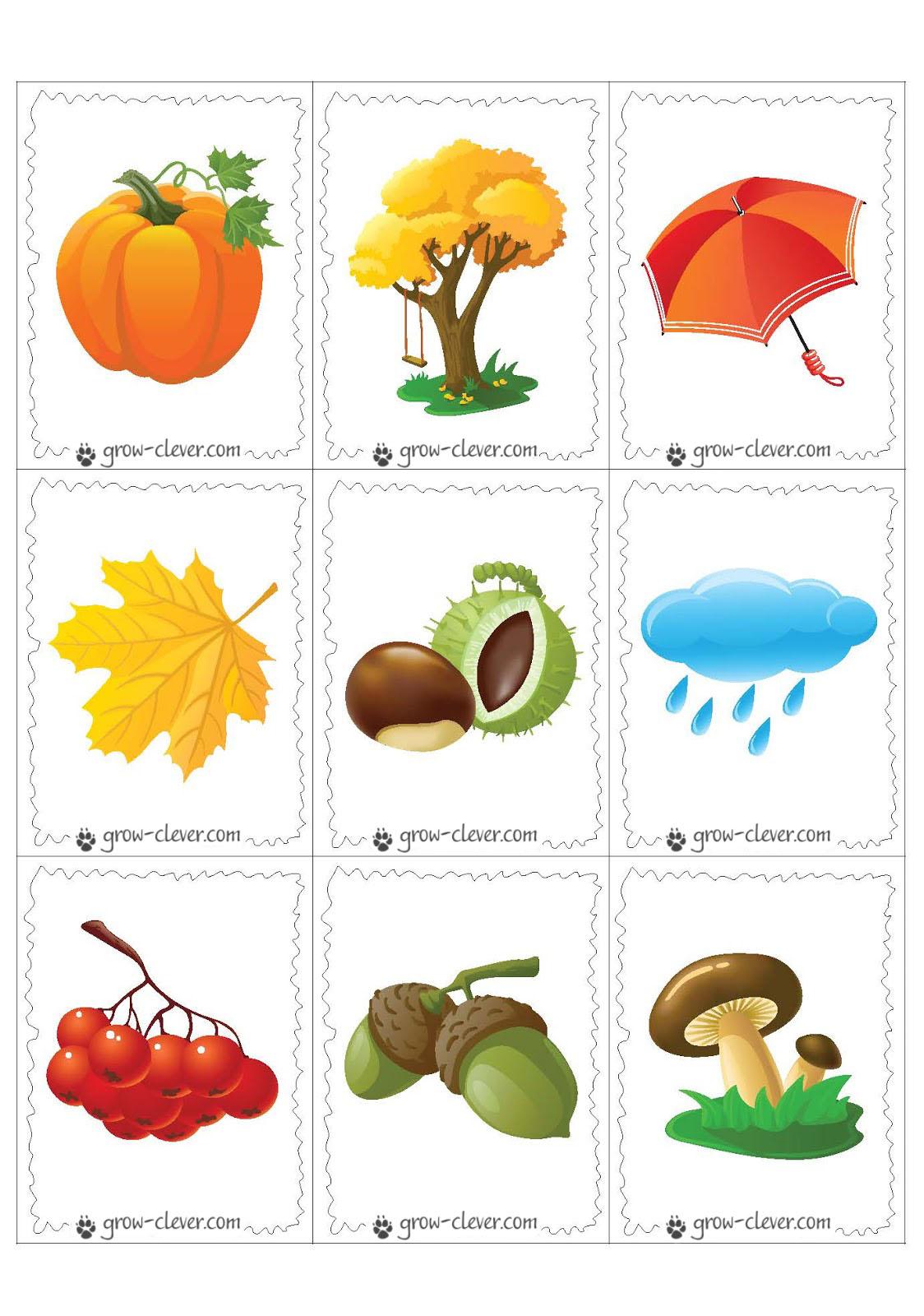 Карточки осень