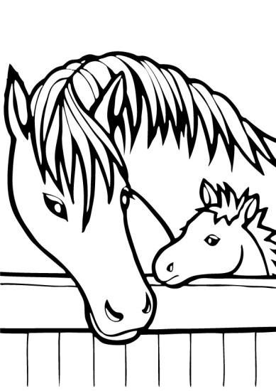 раскраска лошади формат А4