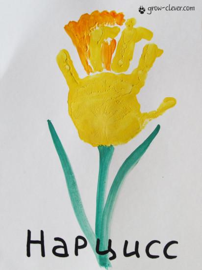 цветок ладошками, нарцисс ладошками