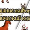 """Тематическая неделя  """"Домашние животные"""""""