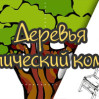 """Тематическая неделя """"Деревья"""""""