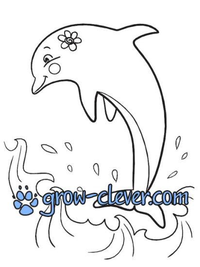 Раскраски с дельфинами для детей