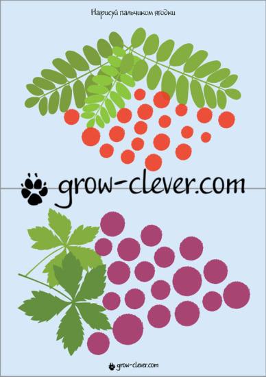 """Шаблон для рисования пальчиками """"Ягоды винограда и рябины"""""""