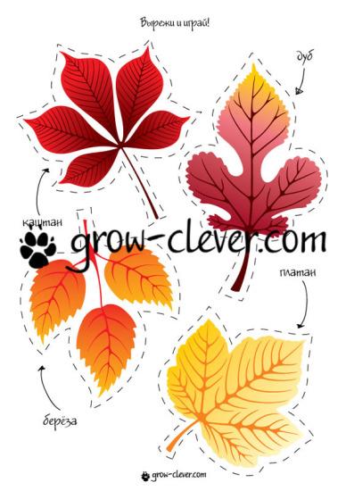 """Шаблон для игр, поделок и домашнего декора """"Осенние листья: береза, дуб, платан, каштан"""""""