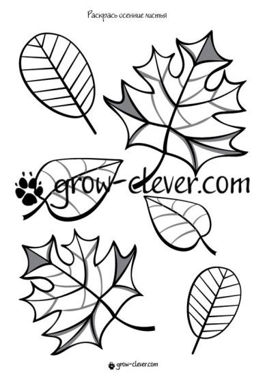 """Раскраска для детей """"Осенние листья"""""""