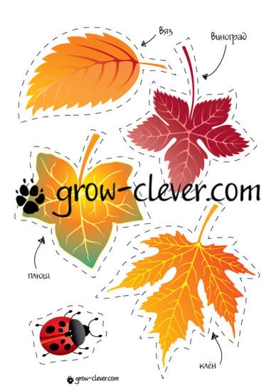 """Шаблон для игр, поделок и домашнего декора """"Осенние листья: плющ, клён, виноград, вяз"""""""