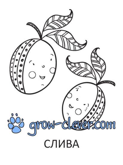 "Раскраски ""Фрукты"": яблоко, банан, груша, апельсин, слива ..."