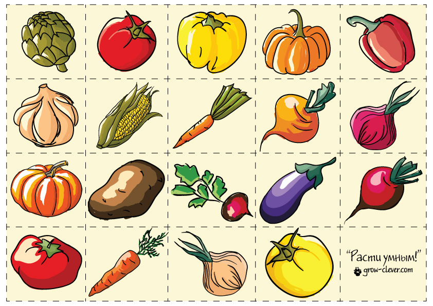 Картинка с овощами