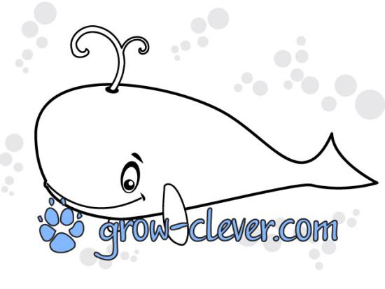 раскраска кит, морские животные, море, сказки