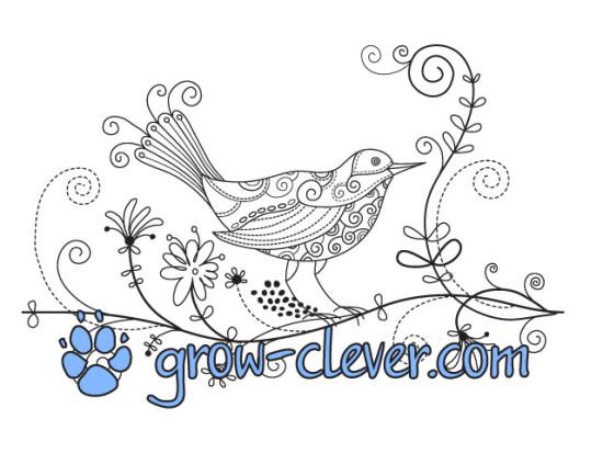 Раскраска птица для детей, картинка весна, раскраски для взрослых