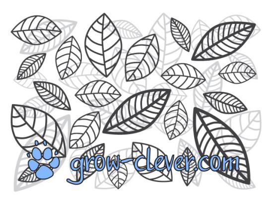 Раскраска листья для детей, картинка весна, раскраски для взрослых