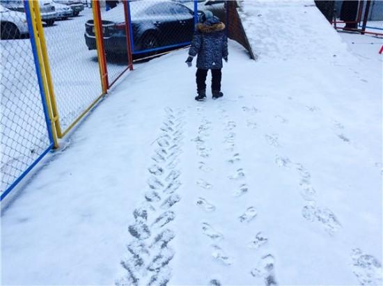 след от трактора или бульдозера ножками на снегу