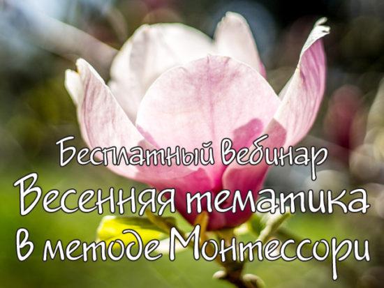 бесплатный вебинар о Методике Монтессори