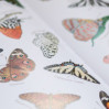11 весенних книг про животных