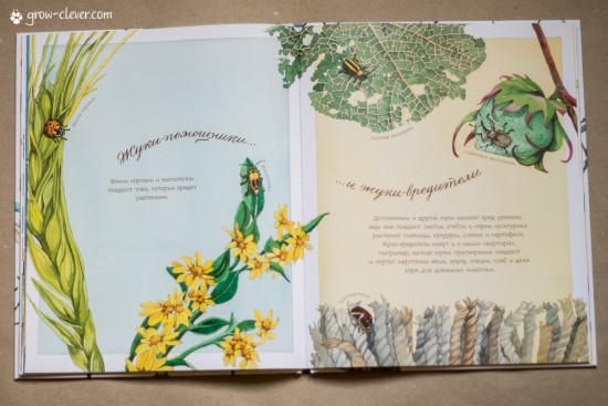 """книга """"Жук всегда осторожен"""" издательства Манн Иванов Фебер, весенние книги"""