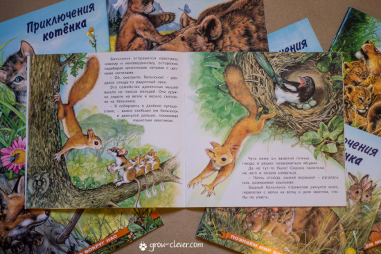 Приключения бельчонка, оленёнка, зайчонка, слонёнка, львёнка, медвежонка, лисёнка, котёнка
