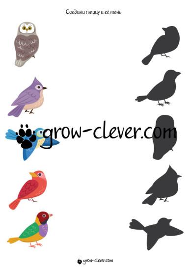 тематическая неделя, тематическое занятие, тематический комплект птицы, игры для детей на тему весна, птицы