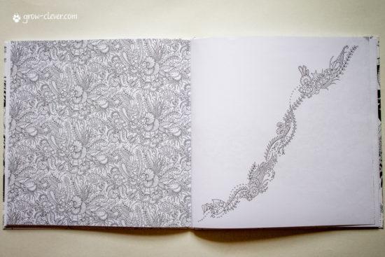 Загублений океан розмальовка, Потерянный океан раскраска, Таинственный сад, Волшебный лес Джоанна Басфорд
