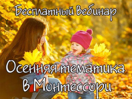 монтессори осень, занятия осенью с детьми, игры с детьми осенью, осенние материалы для детей, вебинар