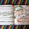 зверажури, виммельбухи, книги для развития внимания, книги проживотных, миф, обзор книг