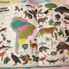 Детские атласы и карты, карты для детей, книги энциклопедии для детей